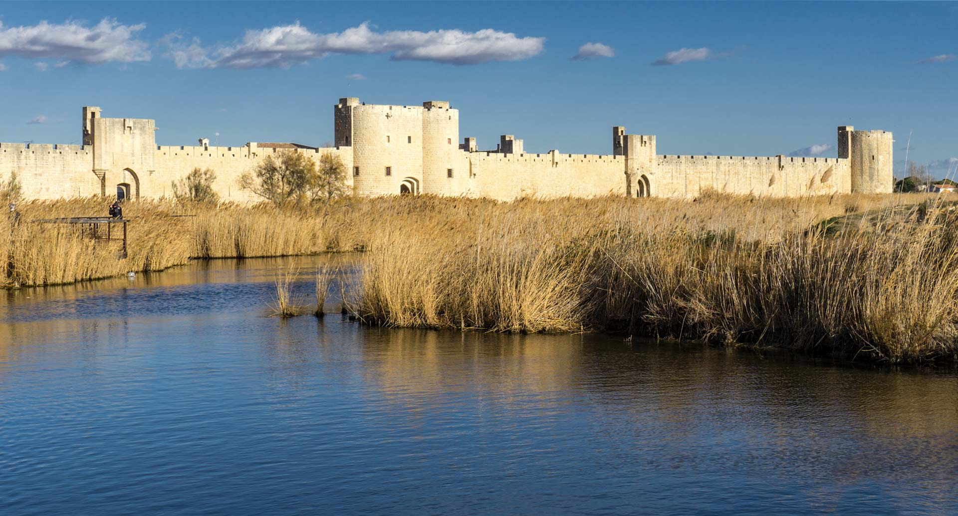 Aigues Mortes Immobilier